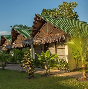 Hotel Amazon Bed And Breakfast photos Exterior