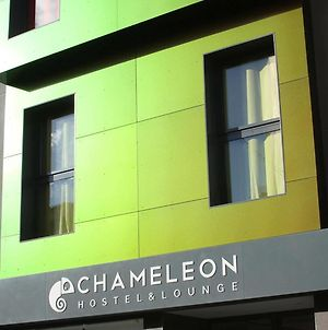 Chameleon Hostel Alicante photos Exterior