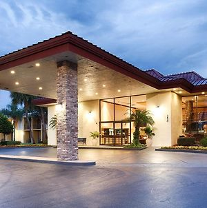 Best Western International Speedway Hotel photos Exterior