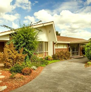 Box Hill Motel photos Exterior