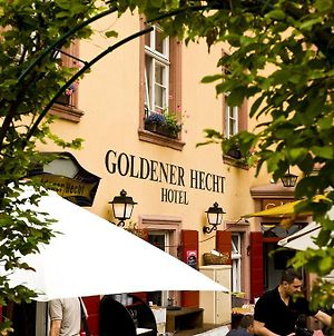 Hotel Goldener Hecht photos Exterior