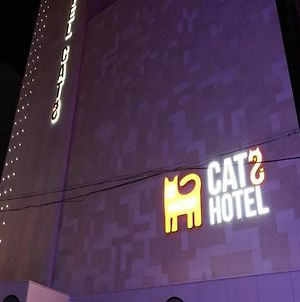 Hotel Cats Suwon photos Exterior