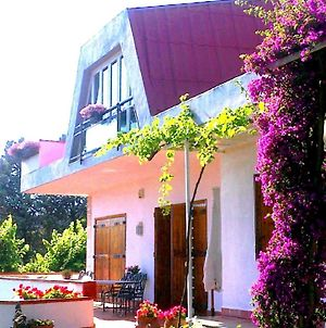 Bed And Breakfast Aloisio photos Exterior