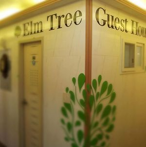 Elm Tree Guest House Myeongdong photos Exterior