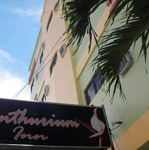 Anthurium Inn photos Exterior