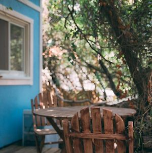 Blue House In The Woods- Amirim photos Exterior
