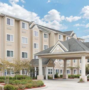 Microtel Inn & Suites By Wyndham Baton Rouge Airport photos Exterior