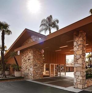 Best Western Pine Tree Motel photos Exterior