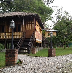 The Roots Eco Resort photos Exterior