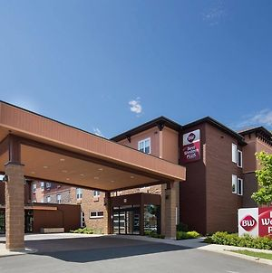 Best Western Plus Bathurst Hotel & Suites photos Exterior