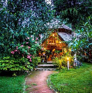 Baan Khao Sok Resort photos Exterior