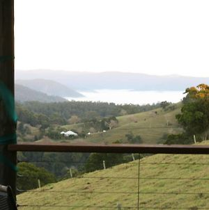Top Cottage @ Maleny photos Exterior