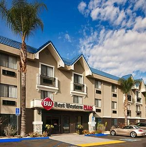 Best Western Plus Diamond Valley Inn photos Exterior