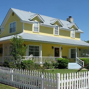 Yellow House Bed And Breakfast photos Exterior