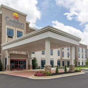 Comfort Inn & Suites East Ellijay photos Exterior