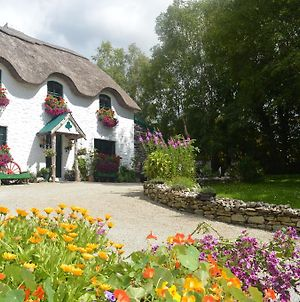 Lissyclearig Thatched Cottage photos Exterior