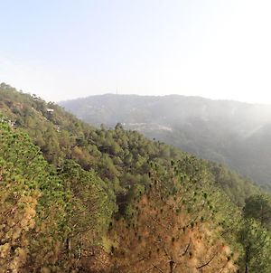 Valley View 1Br Stay In Kasauli photos Exterior