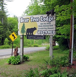 Bear Tree Lodge photos Exterior