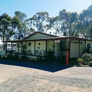 Rose City Caravan Park photos Exterior