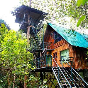 Khaosok Treehouse Resort photos Exterior