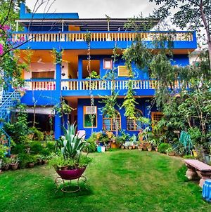 The Coral Tree Boutique Homestay photos Exterior