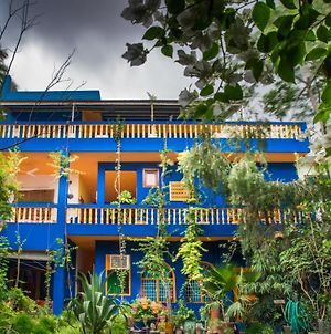The Coral Tree Homestay photos Exterior