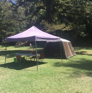 Basin Ku Ring Gai Campsite Set Up photos Exterior