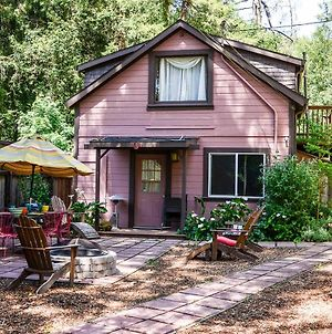 The Hungry Tortuga photos Exterior