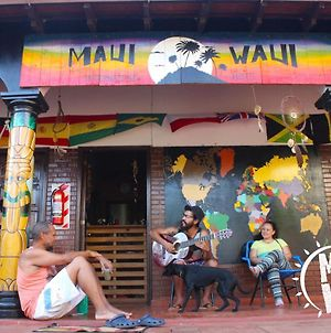 Maui Waui International Hostel photos Exterior