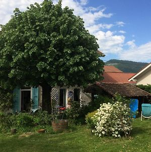 House With 3 Bedrooms In Voiron With Wonderful Mountain View Furnished Garden And Wifi 30 Km From The Slopes photos Exterior