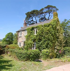 Fern Cottage photos Exterior