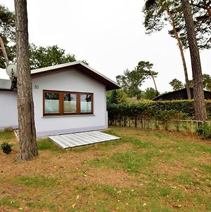 Cosy Holiday Home In Am Salzhaff By The Sea photos Exterior