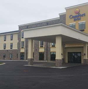 Comfort Inn White House photos Exterior