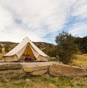 Criffel Station Glamping photos Exterior