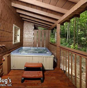 A Secluded Retreat 216 - Two Bedroom Cabin photos Exterior