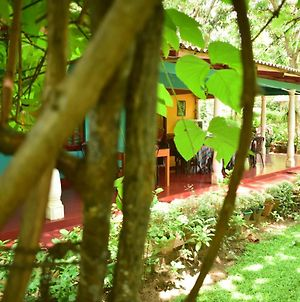 Palitha Home Stay photos Exterior