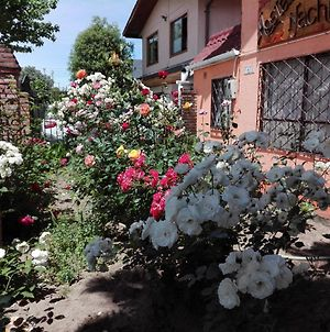 Hostal Casa Nachita photos Exterior
