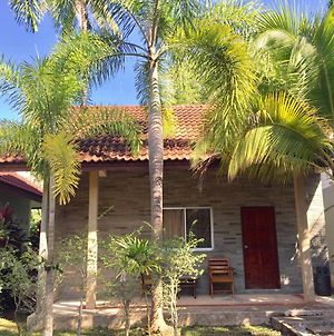 Coconut Bungalow photos Exterior