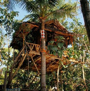 Nyuh Bengkok Tree House photos Exterior