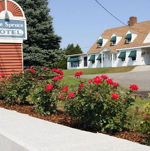 Blue Spruce Motel & Townhouses photos Exterior