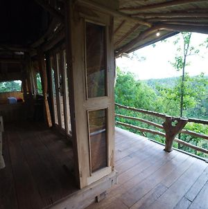 Poin Cliffs & Tree House photos Exterior
