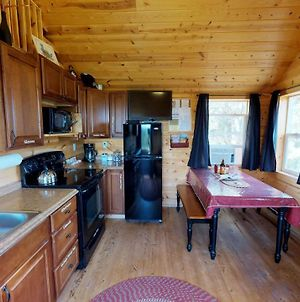 White Pine Cabin By Canyonlands Lodging photos Exterior
