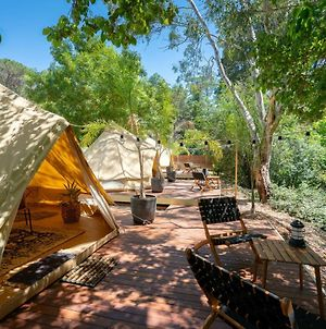 Castlemaine Gardens Luxury Glamping photos Exterior