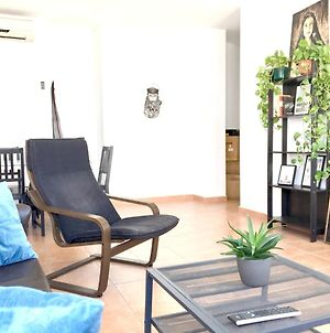Apartment With 2 Bedrooms In Conil De La Frontera With Wonderful City View And Wifi 500 Km From The Beach photos Exterior
