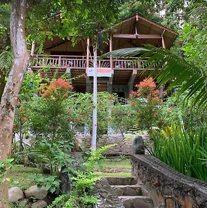 Kupu Kupu Garden Guest House & Cafe photos Exterior