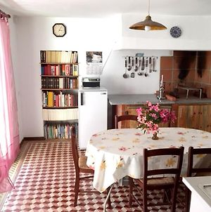 House With 3 Bedrooms In Mira With Wifi 5 Km From The Beach photos Exterior