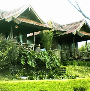 Anaheim Villa Lake Buyan photos Room