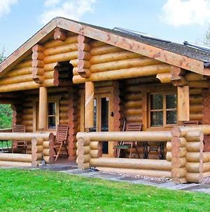 Cedar Log Cabin Brynallt Country Park photos Exterior