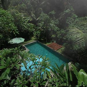 Villa Ubud Sunshine photos Exterior