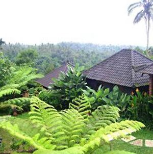 Bali Mountain Retreat photos Exterior